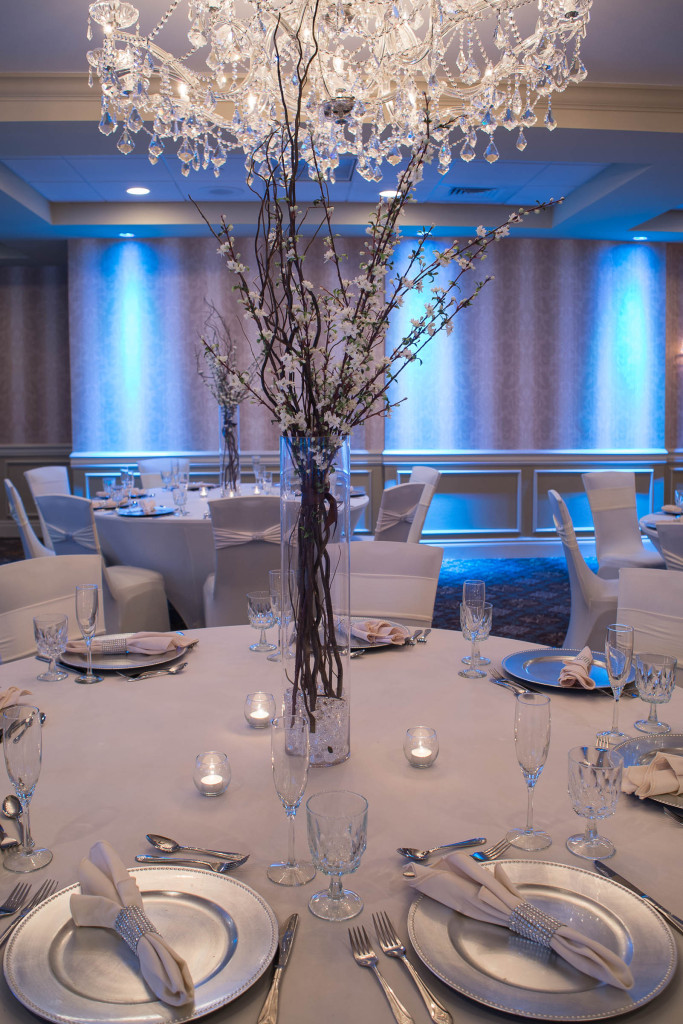 08-2014-10-15 Sterling Lighting Shoot Centerpiece 4 (1)